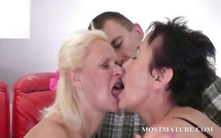 sexually excited cougars bowing pecker in 10some