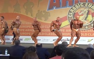 musclebulls: taskmaster bodybuilding over 115 kgs