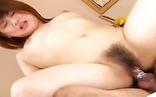 hirsute fur pie asian riding knob