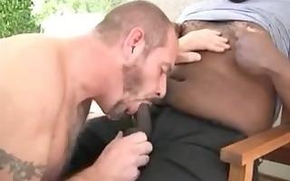 white dad swallows dark bear