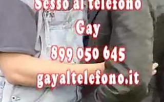 497 3911 414 gayaltelefono.it