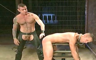 wicked hunk got his large wang bound and tortured