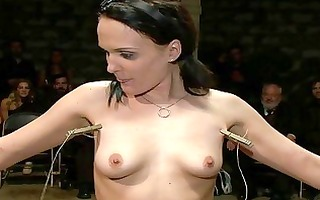 sexy marvelous playgirl dominated