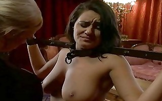 sexy glamorous gal dominated and drilled